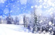Названия месяца «снежань» нет больше ни в одном языке