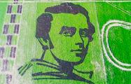 Украинцы вырастили портрет Шевченко, который видно из космоса