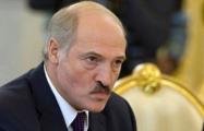 Гродненцы сравнили Лукашенко с Гитлером
