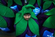 В Индии приостановили регистрацию Greenpeace