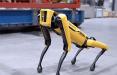 Китайский стартап выпустил робота-собаку, который бежит возле хозяина и несет его вещи