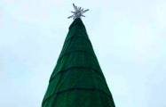 Фотофакт: в Новобелице установили елку из искусственного газона