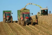 Министр сельского хозяйства хочет добиться невозможного