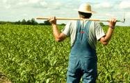 Слуцкий фермер: Хуже, чем сейчас, никогда не было