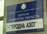«Гродно Азот» отдаст России 25% своих акций