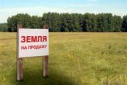 Итоги аукционов: самые дорогие участки в Минском районе