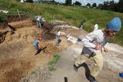 В Кемерово нашли скелет динозавра