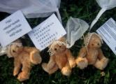 По делу «медвежьего десанта» арестована 16-летняя девочка?
