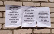 В Березовке появились антилукашенковские листовки