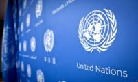 В ООН шокированы ситуацией в Беларуси