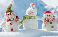 Брестчанку будут судить за то, что ее ребенок слепил снеговика