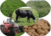 Утверждена госпрограмма развития аграрного бизнесе