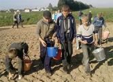 В Брестской области использовали нелегальный труд подростков
