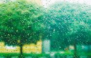 В Пермском крае жителей обязали платить «налог на дождь»