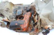 Фотофакт: На дне Комсомольского озера дайвер-любитель нашел пистолет