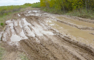 Жители Брестской области поинтересовались, куда уходит «дорожный налог»
