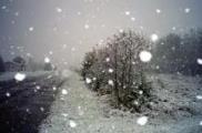 В понедельник в Беларуси ожидается мокрый снег