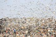 Китай перестанет завозить иностранный мусор