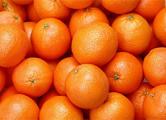 Россельхознадзор вернул в Беларусь 137 тонн фруктов