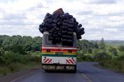 В Танзании в результате падения школьного автобуса с обрыва погиб 31 человек