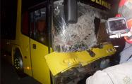 Видеофакт: На трассе М5 лошадь влетела в салон автобуса через лобовое стекло