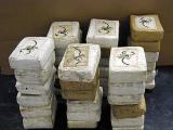 В Мексике арестовали главного поставщика колумбийского кокаина