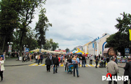 В Рогачеве отмечают День белорусской письменности