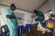Российские специалисты помогут в борьбе с вирусом Эбола