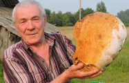 В Докшицком районе нашли гриб-великан