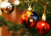 Главную новогоднюю елку страны начнут собирать 5 декабря