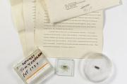 Созданная в 1958 году микросхема осталась без покупателей на Christie's