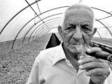 Умер знаменитый кубинский табаковод Алехандро Робайна