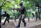 Южнокорейские военные приняли воздушные шарики за вражеские парашюты