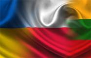 Межпарламентская ассамблея Украина-Польша-Литва создала новый комитет