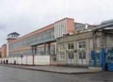 Гендиректора «Борисовдрева» обвиняют в ущербе на 18 миллиардов