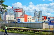 «Баста»: Что происходит на заводе в Светлогорске по ночам