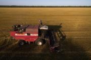 Путин предложил накормить страны АТР экологически чистыми продуктами