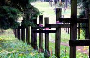 Власти могут обложить налогом кресты для Куропат