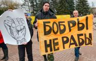 Профсоюз РЭП: Осенью во всех крупных городах Беларуси пройдут акции протеста