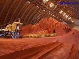 Беларусь готова увеличить поставки калийных удобрений во Вьетнам до 300 тыс.т