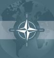 НАТО: Выборы президента в Беларуси станут тестом для дальнейших отношений