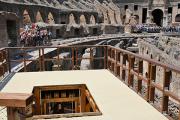 В Колизее восстановили лифт для диких зверей
