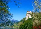 В Словакии начались парламентские выборы