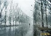 3 июля в Минске ожидаются кратковременные дожди и возможна гроза