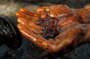 Украина и Беларусь договорились о транзите нефти, но на каких условиях?