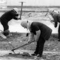 Рабский труд на «Дожинках»