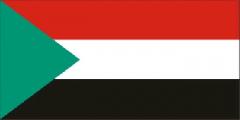 Пропавший в Судане вертолет с россиянами вернулся на базу