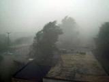 Шквалистый ветер оставил без электричества 869 населенных пунктов Беларуси