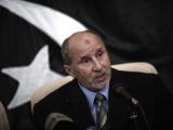 Мирный план Африканского союза в Бенгази назвали запоздалым