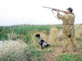 Сезон охоты на водоплавующую и болотную дичь откроется в Беларуси 7 августа